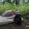 The Forest @ REWILD