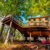Pete NelsonTreeHOUSE-off the grid