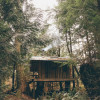 Cozy Tiny House in the Woods