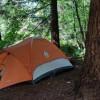 Woodland Wonderland Site 1