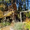 Meadowhawk Sanctuary Treehouse