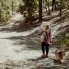 Spruce Mt Gold, 4 wheel road, creek