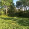 Secluded Hilltop Meadow on Farm