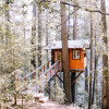 The Sanctuary Treehouse