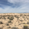 Peace and quiet in the desert