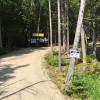 Acadia East Campground Cadillac Mtn