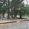Lupine Campground