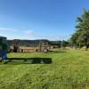 Windy acres sheep farm