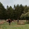 Healing Hearts Ranch RV Site