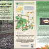 Ironwood Trail & Private Campsite