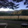 Serenity Grove at North Fork