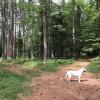 Woodland Grove RV - self sufficient