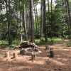 Woodland Grove Camping - 3 sites