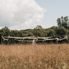 Hay House Farm