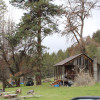 Bologna Creek Ranch