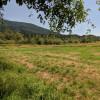 Coriander Creek - Southfield RV