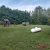 Shaffers peace site