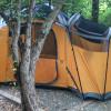 Belfair Tree Loop Campground