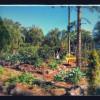 Vivacious Gardens RV camping