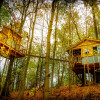Enchanted Magical Aliyah TREEHOUSE