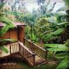 Samatahiti, Ocean-view Jungle Oasis