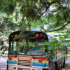 School Bus Livin' by Lake Superior!