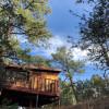 Tecolote/ Pegasus Treehouse Cabins