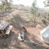 Malibu Fig Ranch Glamping