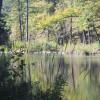 Big Brushy Campground