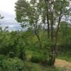 Costello's Creek Camp