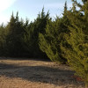 Camping in the Suburbs!! 7 acres of