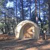Forest Gnome Dome,  Cedar Bloom