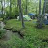 Buffalo Gap Island large group camp
