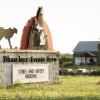 Dhaseleer Farm Camping