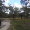 Smokey Acres Primitive Camp Site 2