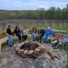 Wine Trail Wilderness