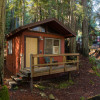 Queer Community Cabins in the woods