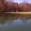 60Acres/Pond/Creek/Waterfalls