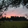 Summer bliss on the farm #1