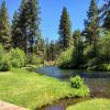 Metolius River Paradise