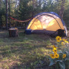 Tent site with campfire & hammocks