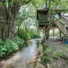 Magical treehouse rental, creekside
