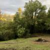 Ridge View Camping
