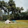 The Village at Irish Creek Site #2