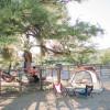 Camping at LuckyPup Ranch