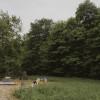 Hudson Valley Farm Camping