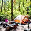 Camping on the Noyo- 9 Tent Sites