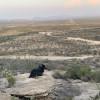 Tres Arroyos- High View Campsite