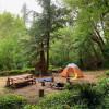 Nature Camp