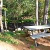 Camp Webb River, Near Mt Blue State